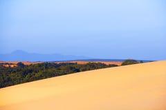 Oasis in desert Stock Photos
