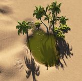 Oasis. In the desert made in 3d software Stock Images