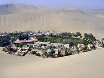 Oasis in the desert. Oasis in the middle of the desert stock image