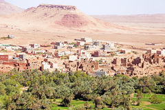 Oasis in the desert in Morocco Stock Photos