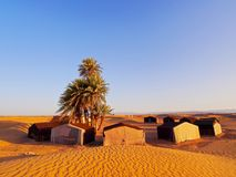 Oasis on the desert, Morocco. Oasis and a camp on Zagora desert in Morocco, Africa Royalty Free Stock Photo