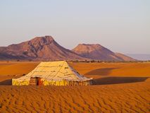 Oasis on the desert, Morocco. Oasis and a camp on Zagora desert in Morocco, Africa Royalty Free Stock Image