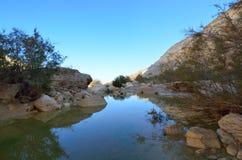 Oasis in the desert. National park Ein Avdat spring. Negev Desert. Israel Stock Images