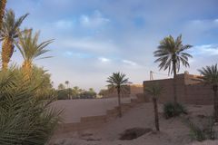 Oasis in the desert. Palm trees in an oasis in the desert of Morocco Royalty Free Stock Images