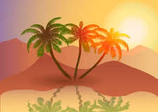 Oasis in the desert at sunset. Royalty Free Stock Photo