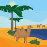 Oasis on desert. Vector illustration graphic design Stock Photo