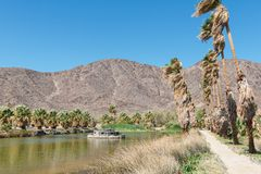 Oasis. In the desert, Zzyzx, California stock photo