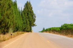 Oasis Effect on the road. The oasis effect occurs on the road in a very hot and humid day stock images