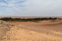 Oasis of El Qasr in the Sahara desert Stock Images