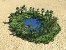 Oasis en el desierto Imagen de archivo