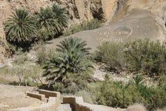 Oasis en Tunisie photographie stock