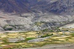 Oasis Himalayan Imagen de archivo libre de regalías