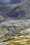 Oasis Himalayan Imagen de archivo