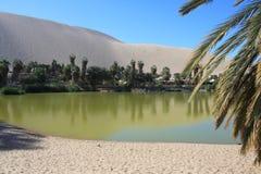 Oasis of Huacachina in Atacama desert, Peru Stock Images