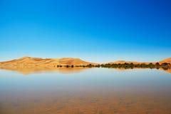 Oasis lake in Sahara desert, Merzouga, Africa Stock Photography