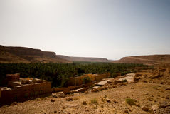 Oasis in the mountains. Oasis in the Middle Atlas Mountains, Morocco Royalty Free Stock Image