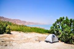 Oasis near the Dead Sea Stock Image