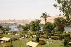 Oasis on the Nile Royalty Free Stock Photo