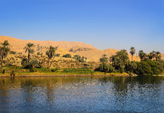 Oasis on the Nile River, Egypt Royalty Free Stock Images