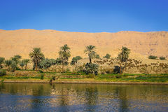 Oasis on the Nile River, Egypt Stock Photography