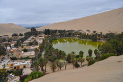 Oasis in Peru. Oasis in Ica, Peru with water and palm trees royalty free stock photography
