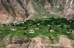 Oasis sèche de montagne Images libres de droits