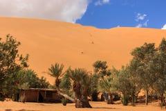 Oasis in the Sahara desert Stock Photo
