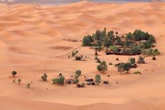 Oasis in Sahara desert Stock Photo