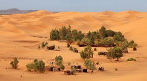 Oasis in Sahara Stock Photography