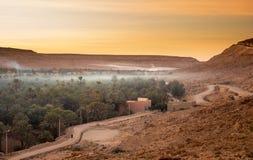 Oasis in the Sahara desert at sunset Stock Photos