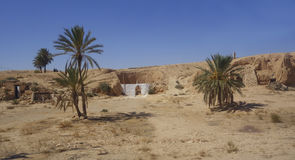 An oasis in the Sahara desert. Royalty Free Stock Photos