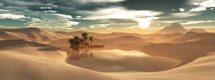 Oasis in the sandy desert Royalty Free Stock Photos