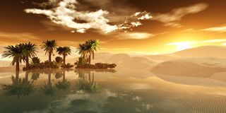 Oasis in the sandy desert stock photos