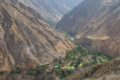 Oasis Sangalle in the Colca Canyon Stock Photos