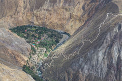Oasis Sangalle in the Colca Canyon stock images