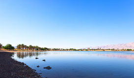 Oasis in the south of Israel Royalty Free Stock Photos