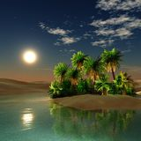 Oasis. sunset in the desert. stock photo