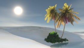 Oasis. Sunset in the sandy desert, palm trees in the desert near the pond, 3d rendering Stock Image
