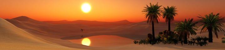 Oasis. Sunset in the sandy desert, palm trees in the desert near the pond, 3d rendering Stock Photo