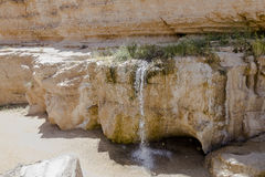Oasis in tunisia. Oasis between the rocks tunisia africa. Small lake with water and waterfall Royalty Free Stock Image