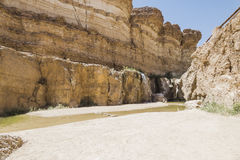 Oasis in tunisia. Oasis between the rocks tunisia africa. Small lake with water and waterfall Royalty Free Stock Photo