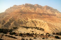 Oasis under mountain. Oasis on the western bank of Dead sea, Israel royalty free stock photography