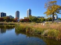 Oasis urbaine d'automne Image libre de droits