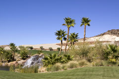Oasis with waterfall and palm trees. Waterfall and palm trees in desert oasis Stock Photos