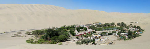 Oasis in white sand dunes Royalty Free Stock Photo