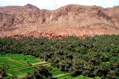 Oasisi typique de petit morceau de village de berber des montagnes d'atlas au Maroc Image libre de droits