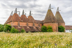 Oast Houses in the county of Kent Royalty Free Stock Photo