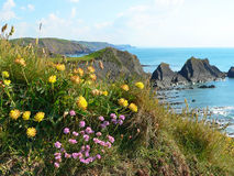 Сoastal landscape hartland quay, cornwall, south england Royalty Free Stock Images