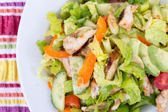 Oasted chicken california salad Stock Photography