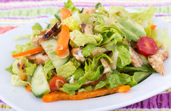 Oasted chicken california salad Royalty Free Stock Photo